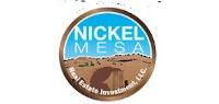 Nickel Mesa banner